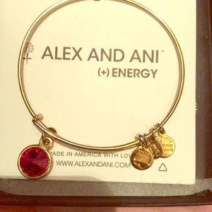 Alex and Ani January birthstone bracelet